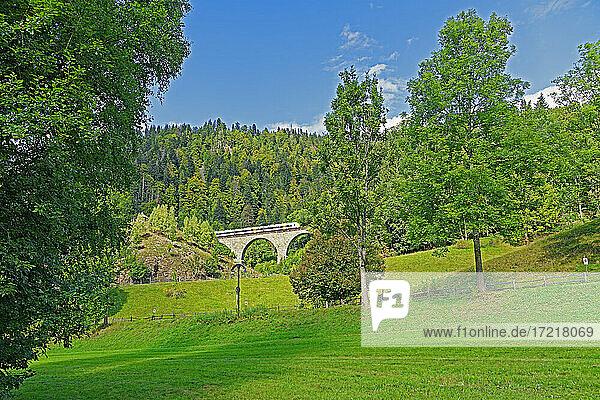 Landschaft  Eisenbahnbrücke  Höllentalbahn  Zug