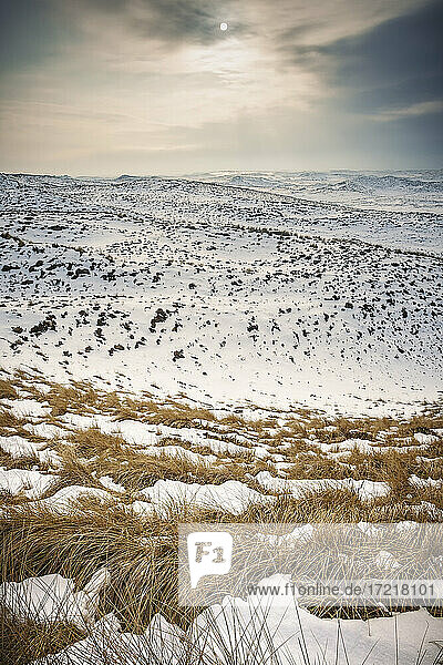 Blick über die verschneite Sylter Dünenlandschaft im Norden der Insel im Februar 2010 - ein sehr seltener Anblick