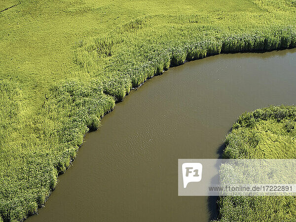 Aerial view over marshes near Elliot Island  Maryland  USA