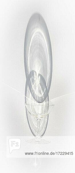Stielglas mit Schatten