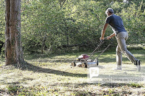 Mature man cutting grass with mower