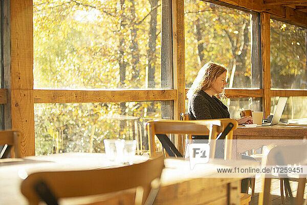 Weibliche Geschäftsinhaberin arbeitet am Laptop im sonnigen Herbst-Café