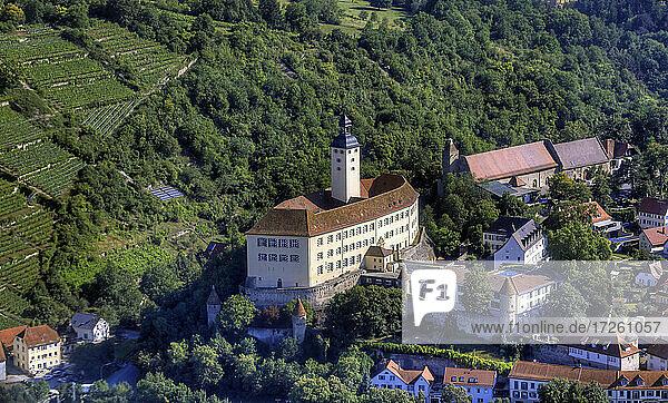 Schloss Horneck in Gundelsheim  Luftaufnahme  Neckartal  UNESCO-Global-Geopark Bergstraße-Odenwald  Baden-Württemberg  Bergstraße  Odenwald  Süddeutschland  Deutschland  Europa.