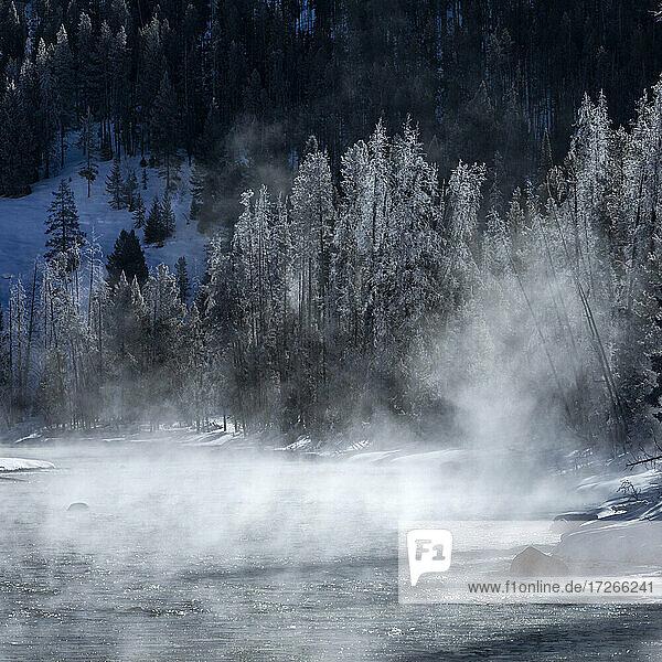 USA  Idaho  Stanley  Salmon River im Winter