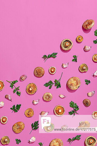 Pattern of mushroom  parsley and garlic assorted on pink background