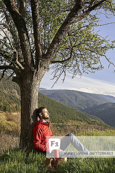 Mann lehnt sich an einen Baum und entspannt sich auf einem Berg