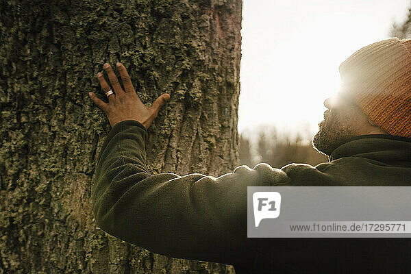 Älterer männlicher Wanderer berührt Baumstamm im Wald an einem sonnigen Tag