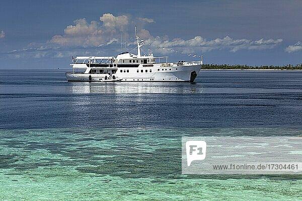 Luxury dive boat  white  Pelagian Liveaboard  in front of coral reef  Wakatobi Dive Resort  Pulau Tolandona  Southeast Sulawesi  Indonesia  Asia