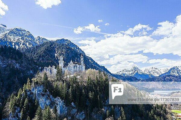 Aerial of Castle Neuschwanstein  before the Alps  Schwangau Bavaria  Germany  Europe