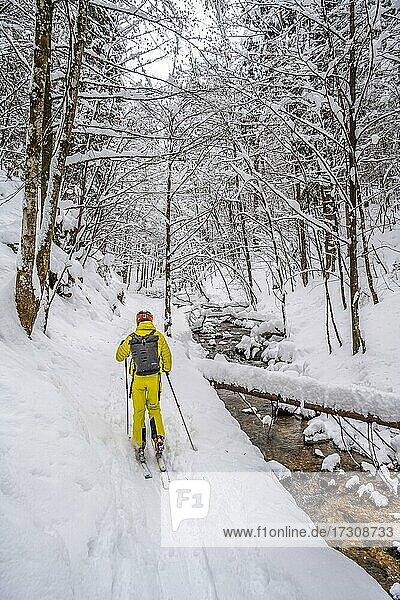 Skitourengeher  Junge Mann auf Skitour zum Taubenstein  Mangfallgebirge  Bayerische Voralpen  Oberbayern  Bayern  Deutschland  Europa