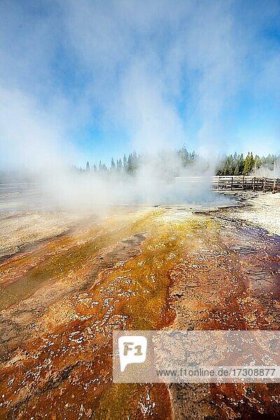 Orange und rote Mineralienablagerungen  dampfende heiße Quellen  Morgensonne  West Thumb Geyser Basin  Yellowstone National Park  Wyoming  USA  Nordamerika