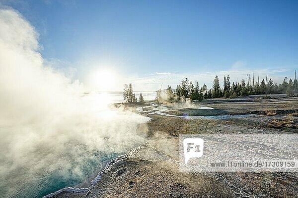 Dampfende heiße Quellen mit türkisem Wasser in der Morgensonne  Black Pool  West Thumb Geyser Basin  Yellowstone National Park  Wyoming  USA  Nordamerika