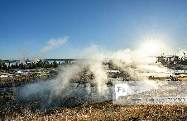 Blick auf dampfende heiße Quellen in der Morgensonne  West Thumb Geyser Basin  Yellowstone National Park  Wyoming  USA  Nordamerika