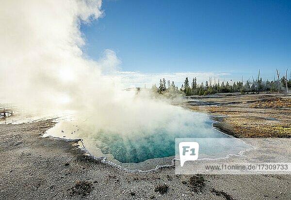 Dampfende heiße Quelle mit türkisem Wasser in der Morgensonne  Black Pool  West Thumb Geyser Basin  Yellowstone National Park  Wyoming  USA  Nordamerika