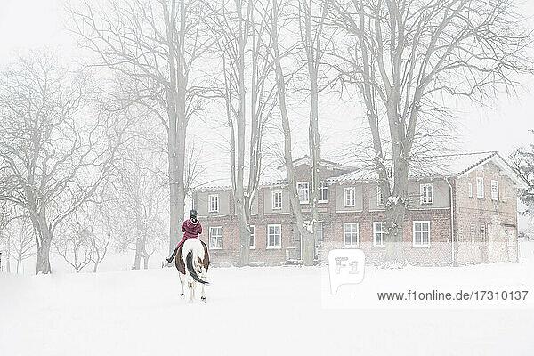 Mädchen reitet Pferd im Schnee draußen
