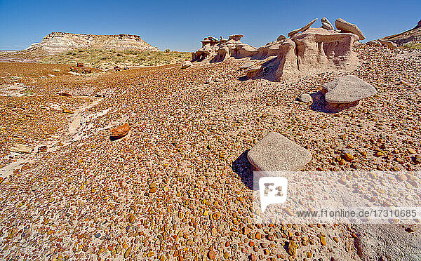 An eroded sandstone formation called a Sandcastle  below the Blue Mesa in Petrified Forest National Park  Arizona  United States of America  North America