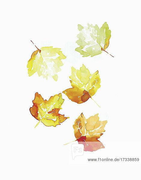 Aquarell mit Herbstblättern