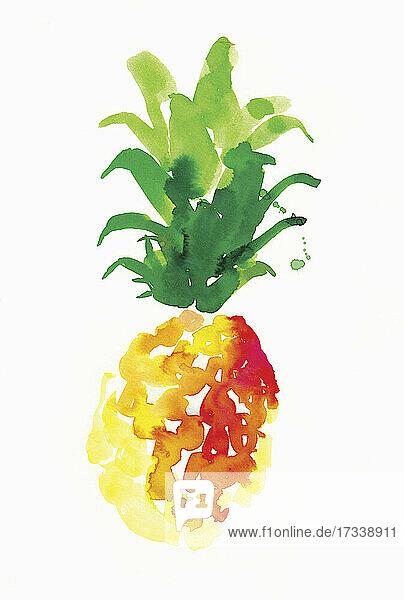 Aquarell einer einzelnen Ananas