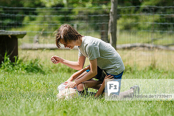 Canada  Ontario  Kingston  Boy (8-9) playing with brother on grass