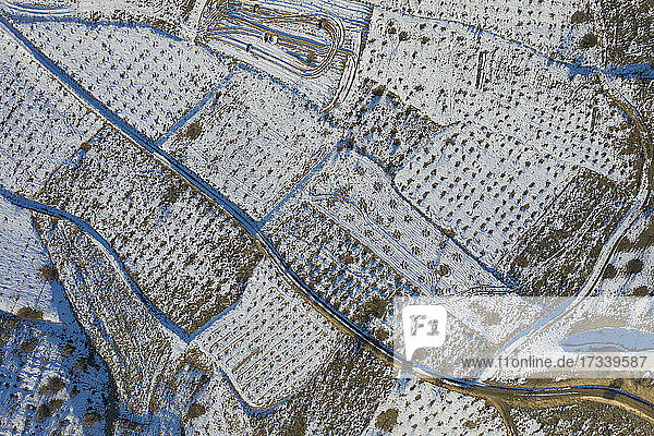 Turkey  Cappadocia  Aerial view of fields covered with snow