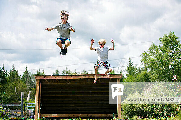 Canada  Ontario  Kingston  Boys (8-9  14-15) jumping from wooden shelter