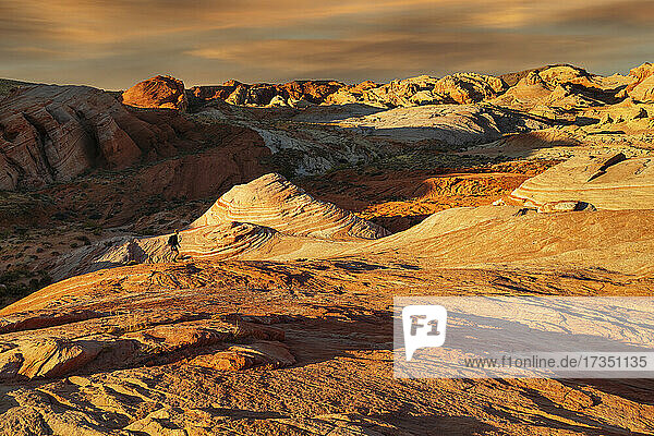 Fire Wave at sunset  Valley of Fire State Park  Nevada  United States of America  North America