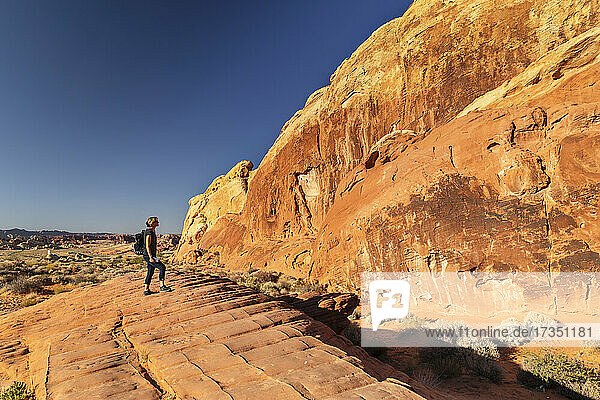 Tourist in Valley of Fire State Park  Nevada  United States of America  North America
