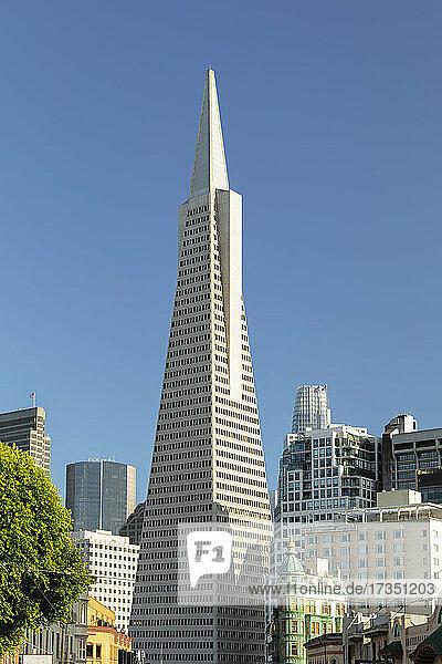 Transamerica Pyramid  Financial District  San Francisco  California  United States of America  North America