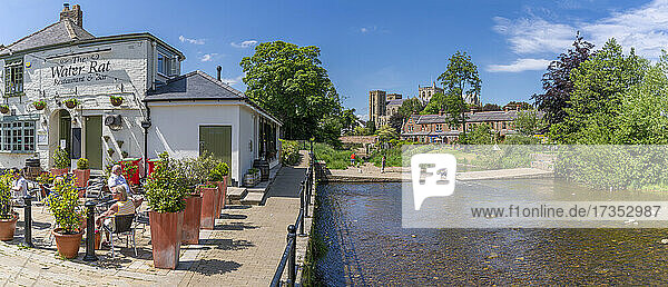 View of Ripon Cathedral and The Water Rat public house on the banks of the River Skell  Ripon  North Yorkshire  England  United Kingdom  Europe