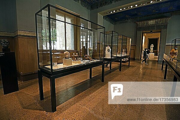 Showcases and exhibits  exhibition rooms  Egyptian Museum  Neues Museum  Museum Island  Berlin  Germany  Europe