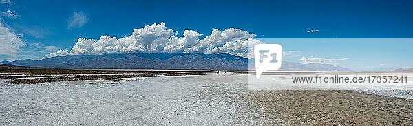 Salt crust in Badwater Basin  salt flats in Death Valley  lowest point in North America  Death Valley National Park  California  USA  North America