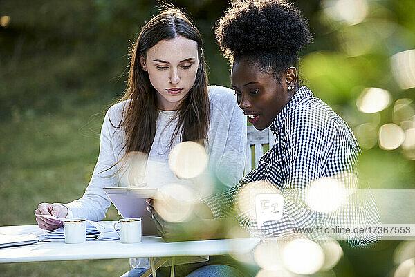 Junge Freundinnen benutzen ein digitales Tablet beim Lernen im Park Junge Freundinnen benutzen ein digitales Tablet beim Lernen im Park