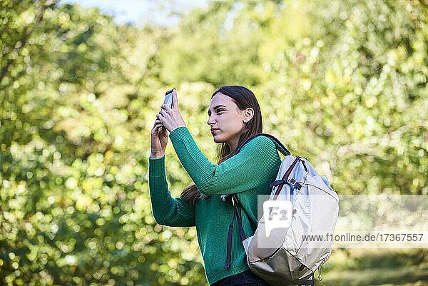 Junge Frau schreibt eine SMS auf einem Smartphone Junge Frau schreibt eine SMS auf einem Smartphone