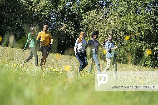 Glückliche junge Freunde haben Spaß beim gemeinsamen Spaziergang im Park