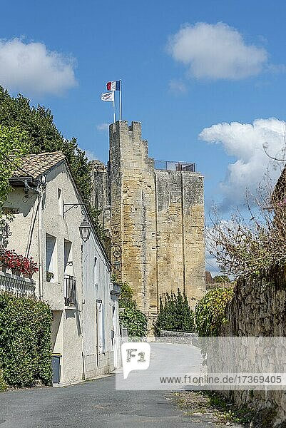 Fortified Tower  Chateau du Roi  Saint Emilion  Gironde  Nouvelle-Aquitaine  France  Europe Fortified Tower, Chateau du Roi, Saint Emilion, Gironde, Nouvelle-Aquitaine, France, Europe