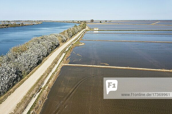 Ebro river and flooded rice fields in May  aerial view  drone shot  Ebro Delta Nature Reserve  Tarragona province  Catalonia  Spain  Europe Ebro river and flooded rice fields in May, aerial view, drone shot, Ebro Delta Nature Reserve, Tarragona province, Catalonia, Spain, Europe