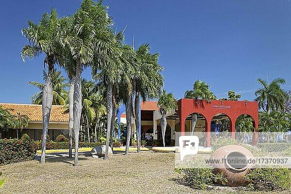 Hotel complex  reception  clay jug  pregnant palms (Colpothrinax wrightii)  endemic  garden complex  Hotel Brisas  Playa St. Lucia  Camagüey Province  Caribbean  Cuba  Central America