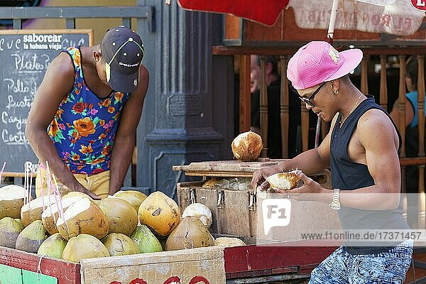 Two dark-skinned young men  Cubans  open coconuts at a stall  Old Town  Capital Havana  Havana Province  Greater Antilles  Caribbean  Cuba  Central America