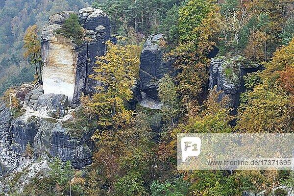 Sandstone rocks in the Bastei area  Elbe Sandstone Mountains  Saxon Switzerland National Park  Germany  Europe