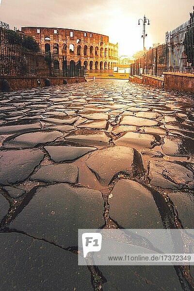 The Colosseum in the rain  sunrise  Rome  Italy  Europe