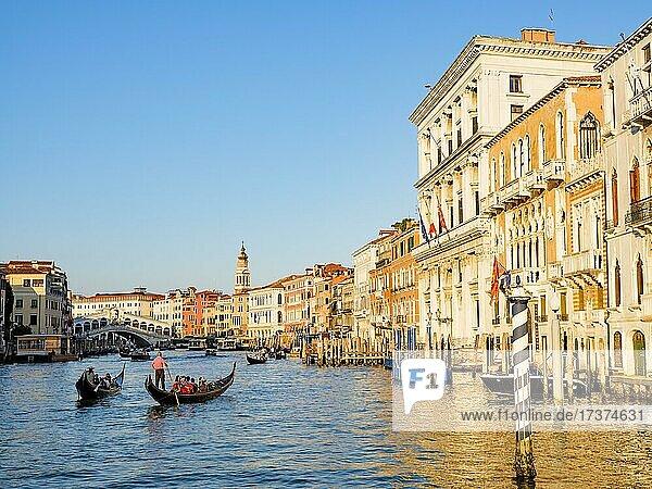 Gondolas next to historic house facades in the Grand Canal  Rialto Bridge in the back  Venice  Venezia  Veneto  Italy  Europe