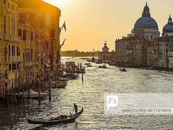 Gondoliers in the Grand Canal at sunrise  with the church of Santa Maria della Salute in the background  Venice  Venezia  Veneto  Italy  Europe