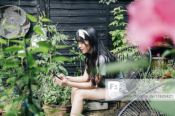 Woman using smart phone while sitting on chair at backyard