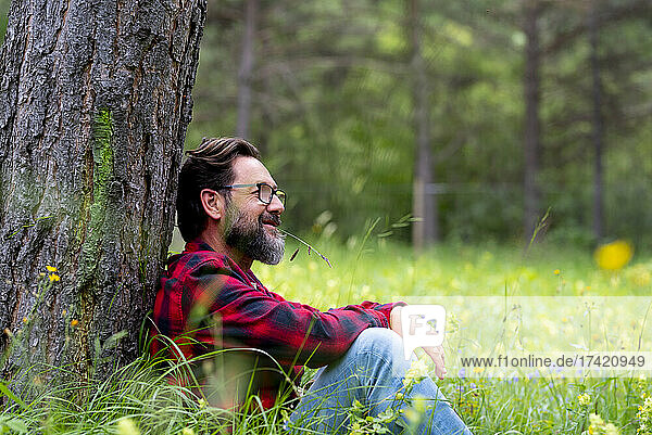 Mature man contemplating while sitting in forest