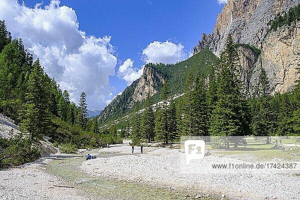 Stream at the Capanna Alpina  Valparola Pass  Fanes Sennes Braies nature Park  Val Badia  Abbey  Ladinia  Dolomites  South Tyrol  Italy  Europe