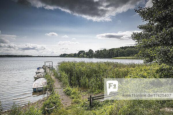 Bootsteg am nördlichen Ufer des Brahmsees bei Langwedel