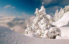 Bayerischen Alpen, Deutschland