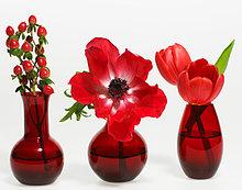 Drei Pflanzen in red Vasen, Vorderansicht