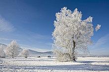 Deutschland, Bayern, Murnau, Winterlandschaft