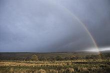 Regenbogens Ende in Landschaft